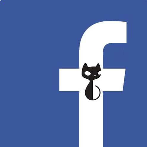 Neko.hu Facebook Bolt